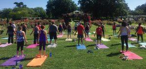 block-4-yoga-option-b2 – Norfolk Botanical Garden on