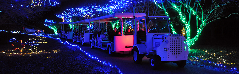 Tinsel Tram Deluxe & Tram Ride Only