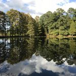 Photography of Mirror Lake