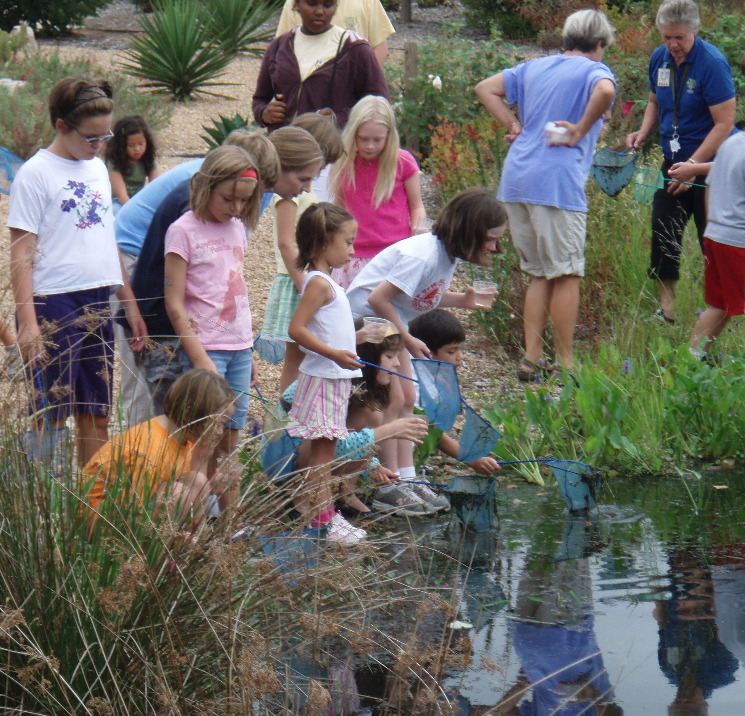 Homeschool Summer Science: Fish are Friends