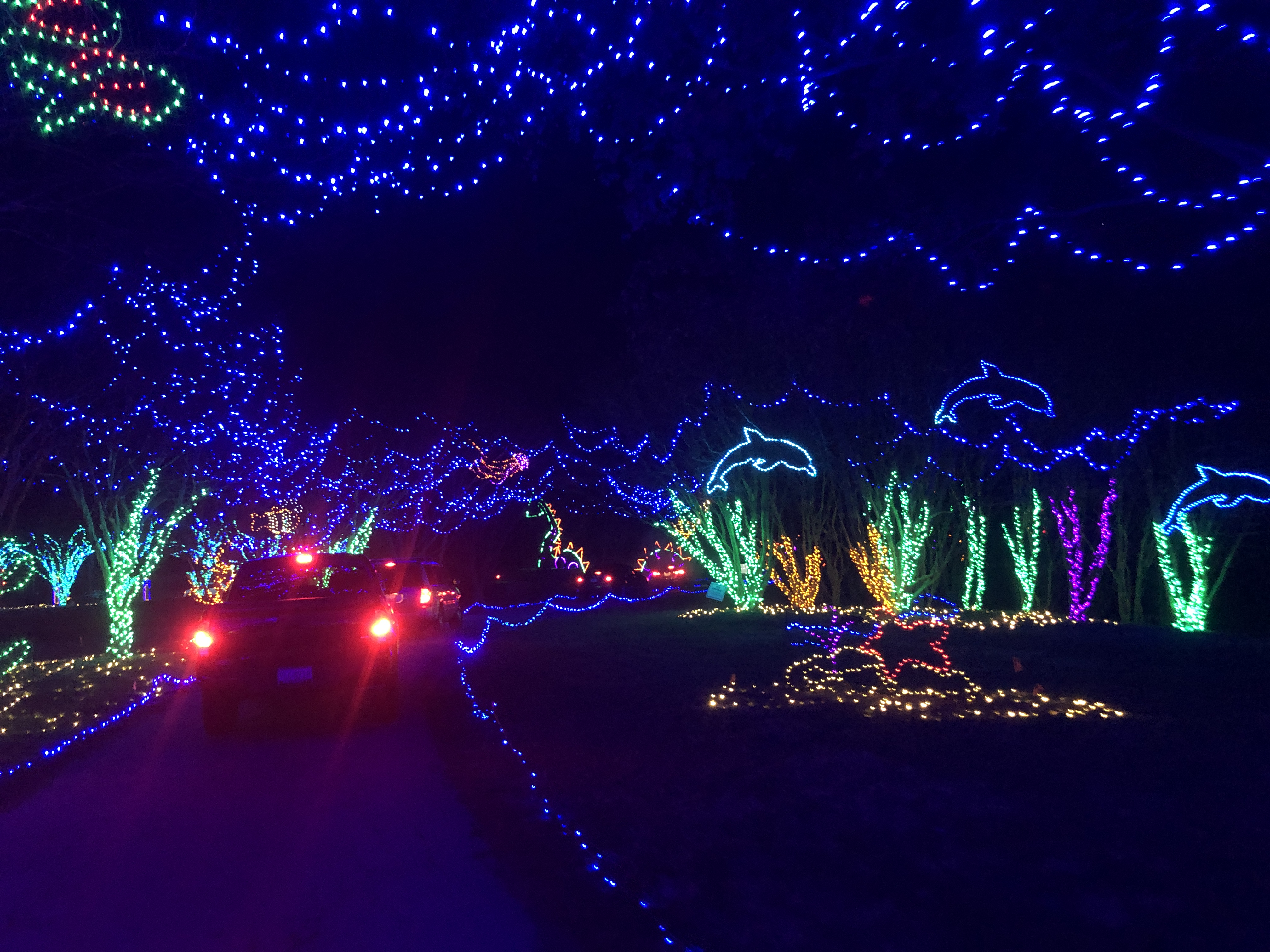 SOLD OUT Dominion Energy Garden of Lights: Behind the Scenes Walk & Talk
