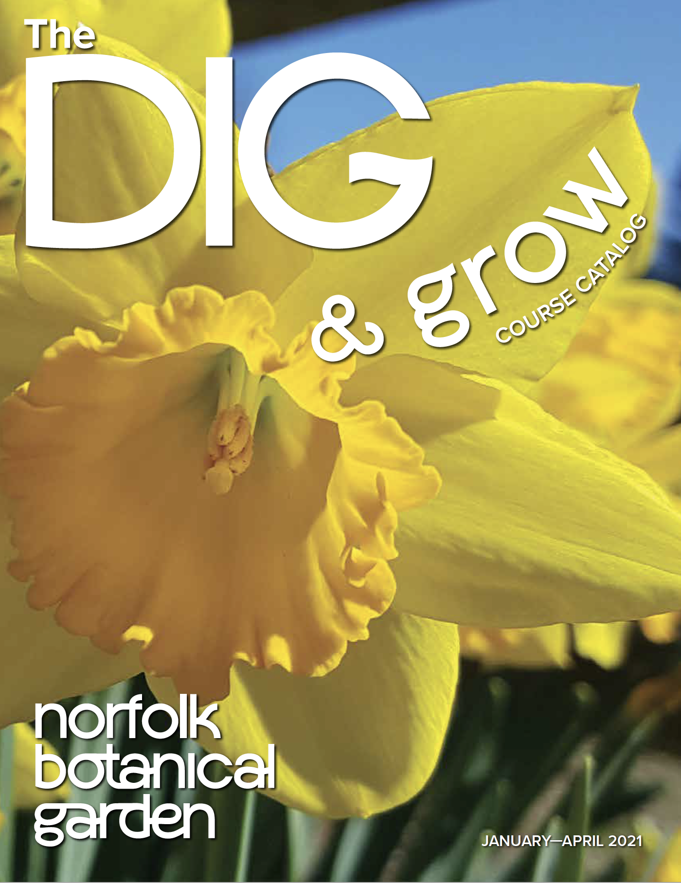 Image of the front cover of NBG newsletter DIG for the months of January through April 2021.