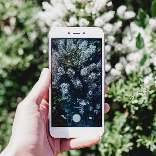 Smartphone Photography for Beginners
