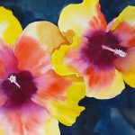 The image is of a watercolor painting of an orange, yellow, and pink hibiscus